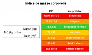 Des facteurs environnementaux augmentent le risque de maladie imc-300x180